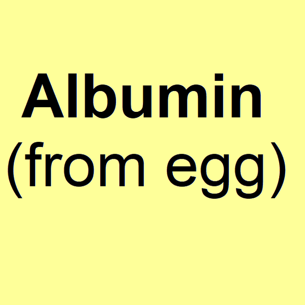 Albumin from egg - powder